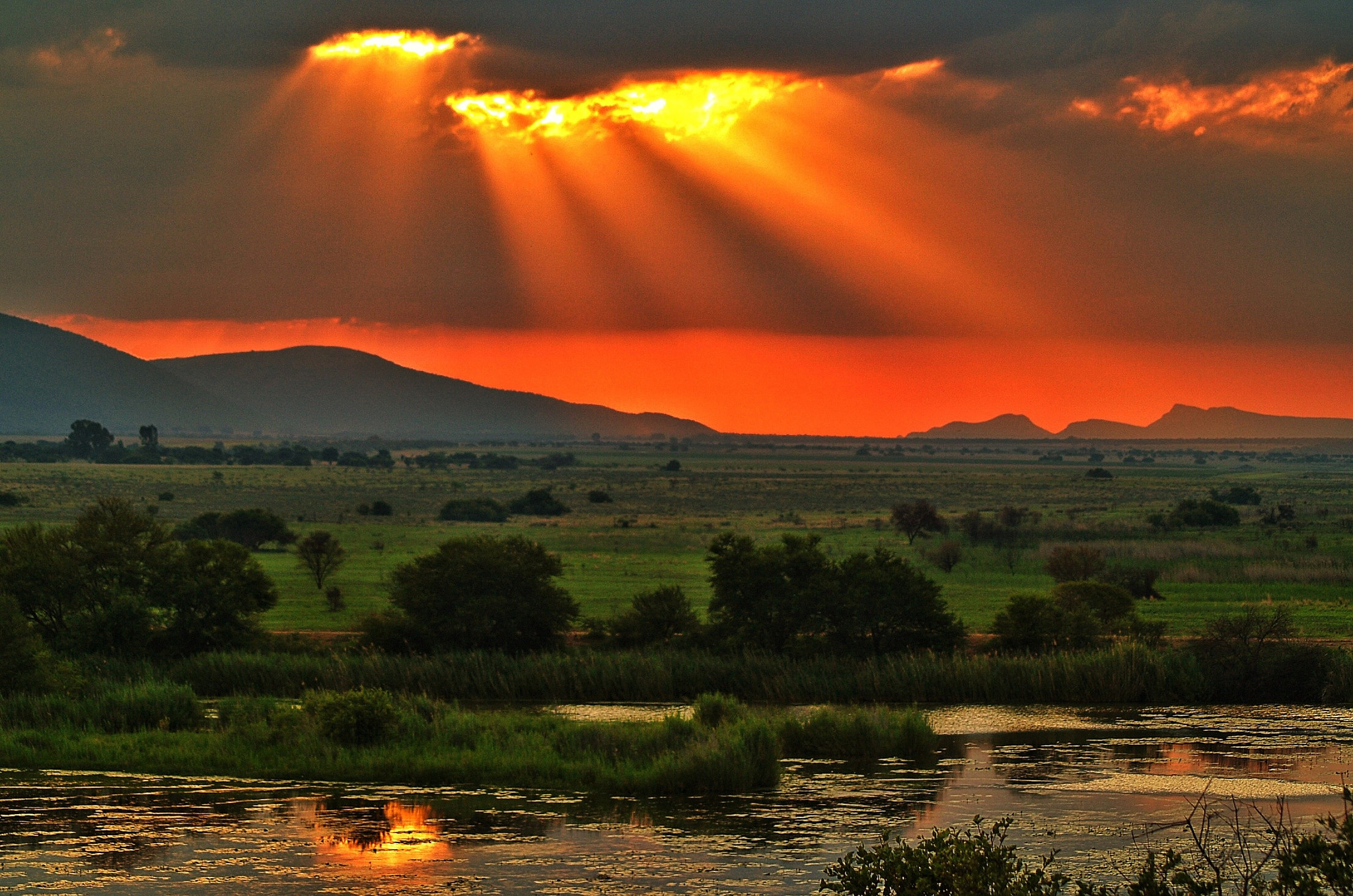 Photograph Stormy African Evening by Anthony Reed on 500px