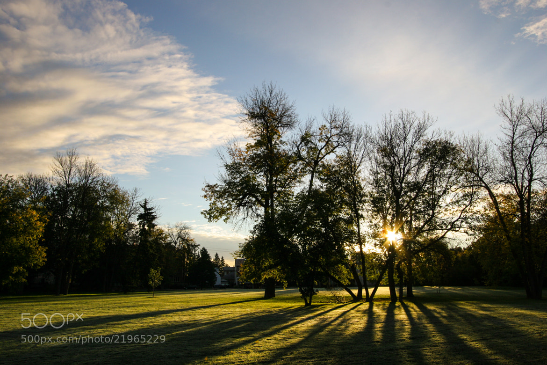 Photograph Into the Sun by Kelly Heard on 500px