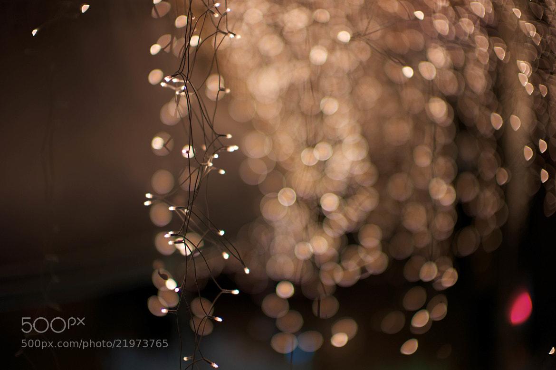 Photograph Lights by Tem Erdenebat on 500px
