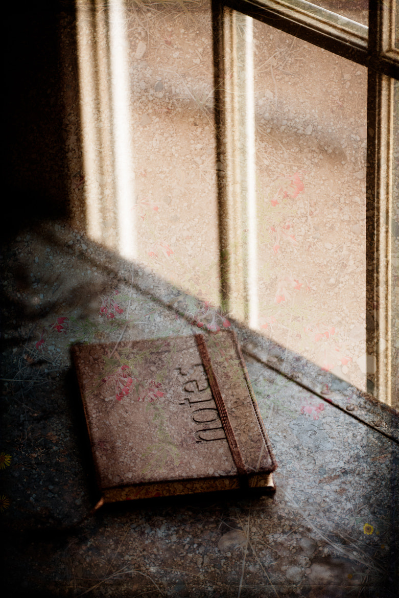 Photograph Notes by Emily Mulder on 500px