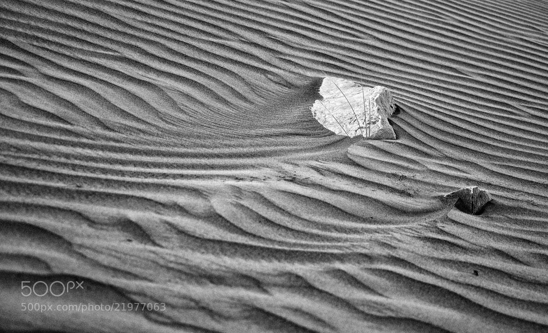 Photograph sand wave by Farah Al Balooshi on 500px
