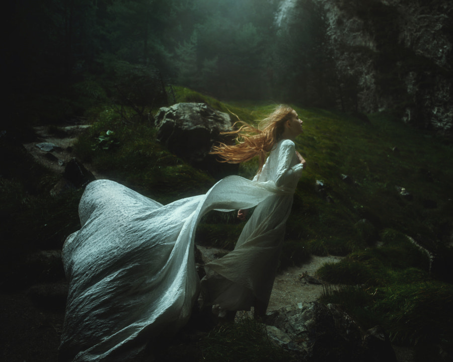 Windswept by TJ Drysdale on 500px.com