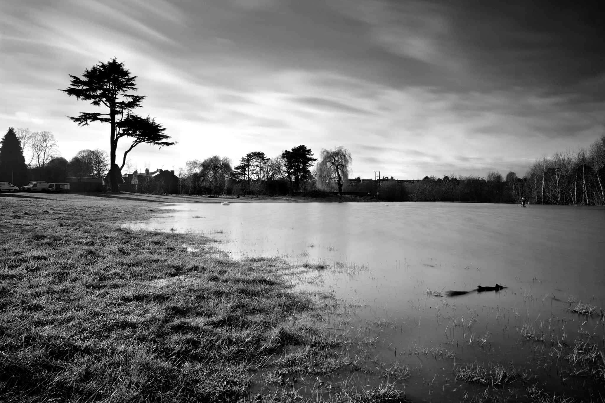 Photograph Gheluvelt Park Flooded by Andrew Russell on 500px