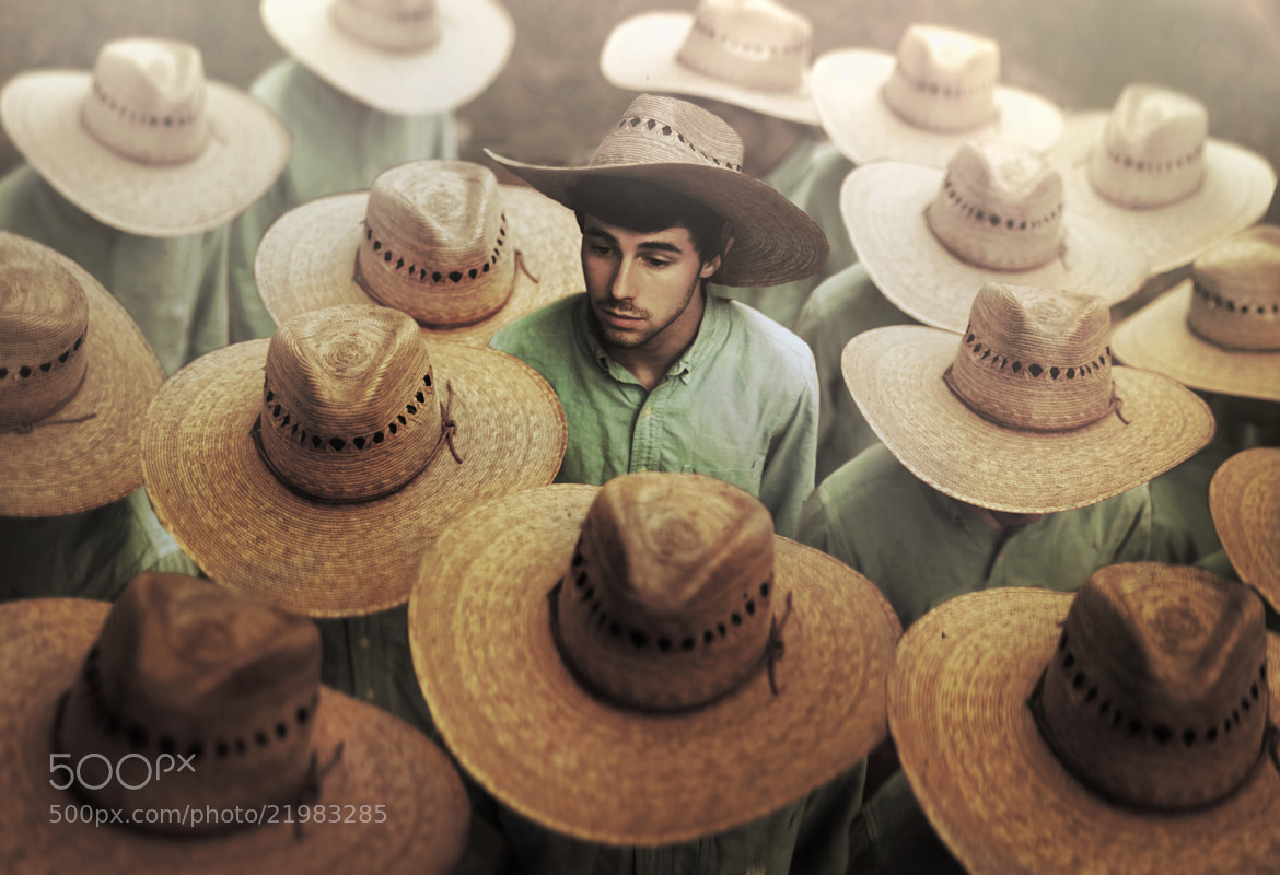Photograph The Helpers  by Nicholas Scarpinato on 500px