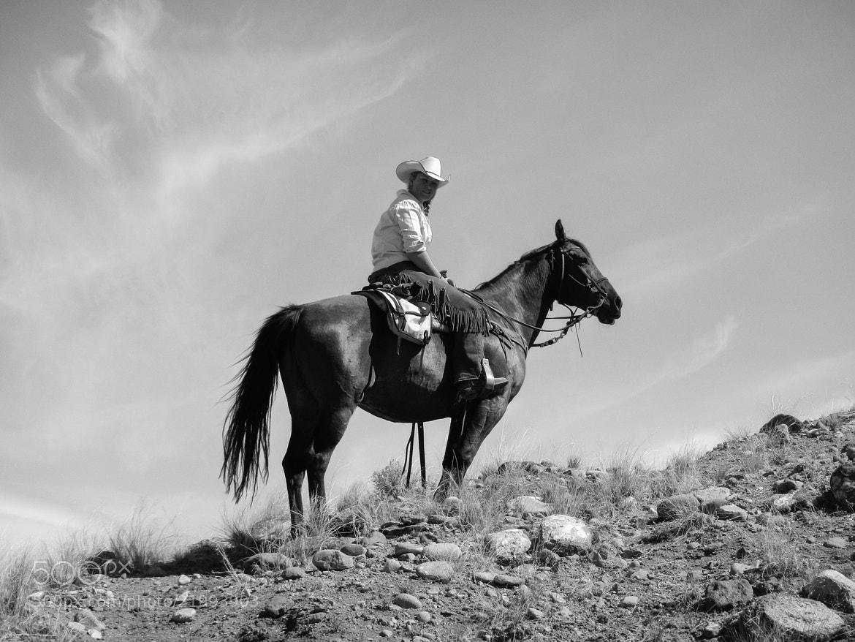 Photograph Horseback by Sam Chalekian on 500px