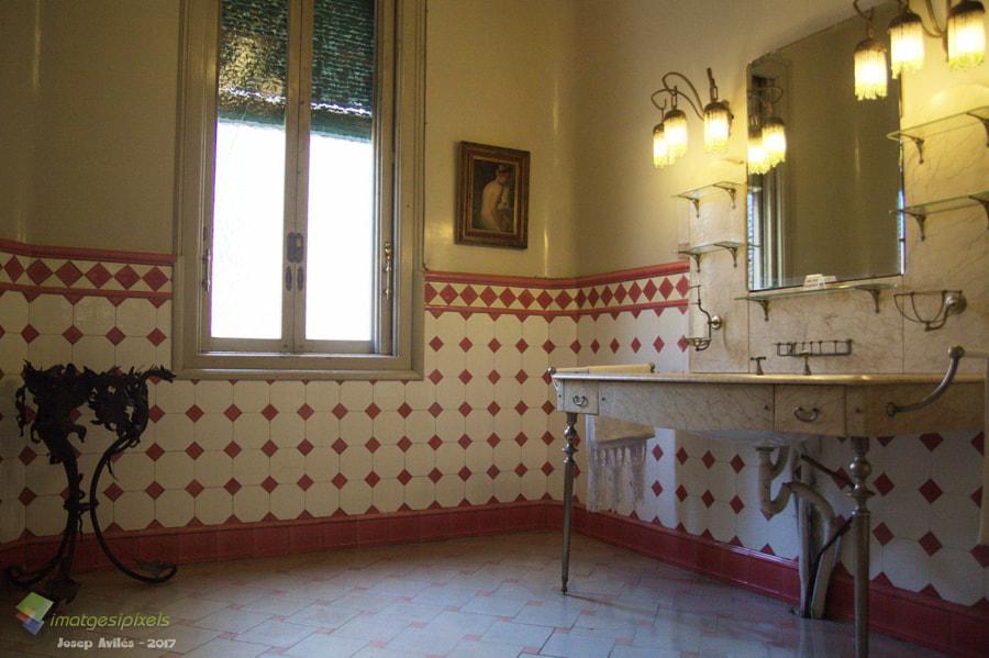 Casa Alegre de Sagrera. Vista dels lavabos