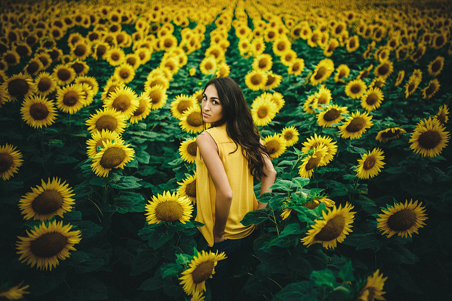 The Girl In The Sunflowers