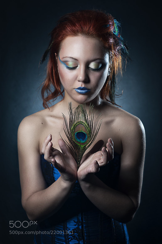 Photograph peacock style by Андрей Морозов on 500px