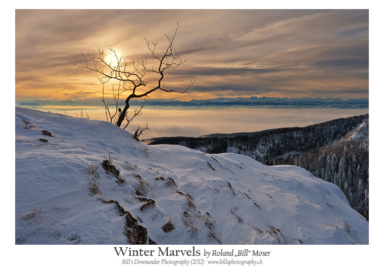 """Photograph Winter Marvels by Roland """"Bill"""" Moser on 500px"""