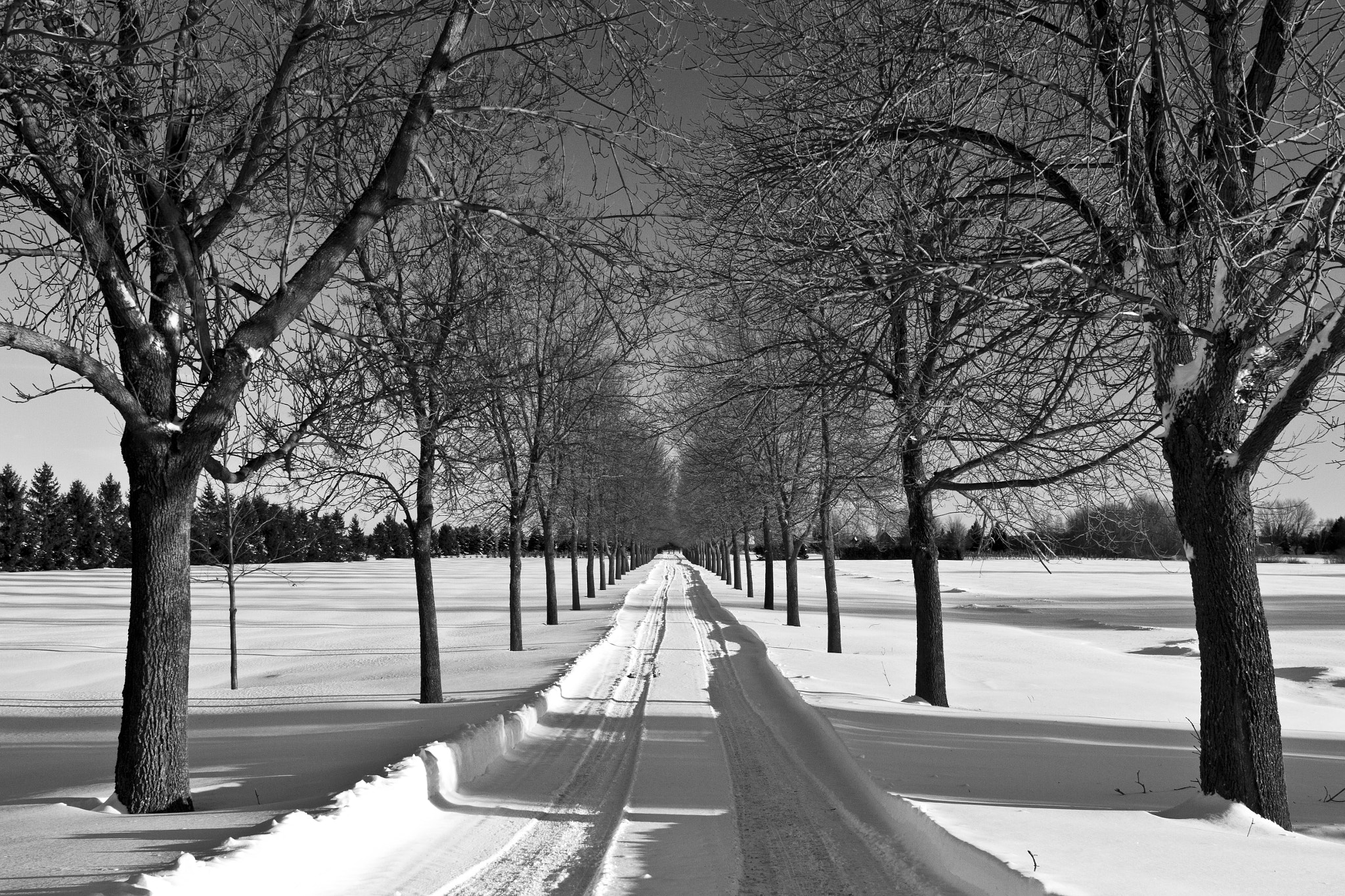 Photograph In the path of 2013 by Annie Macfhay on 500px