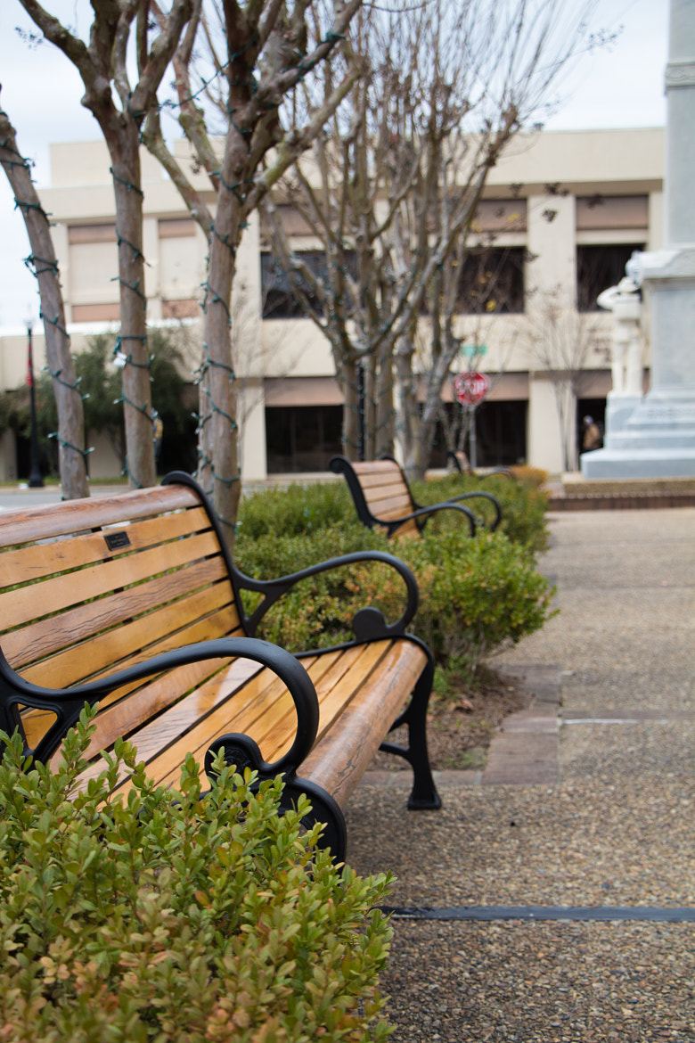 Photograph Benches by Tim Evans on 500px