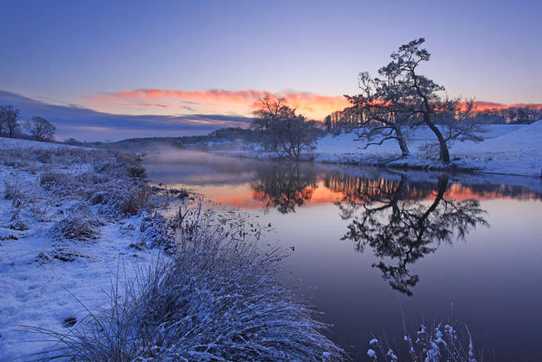 Photograph River Aln at dawn by Andrew Whitaker on 500px