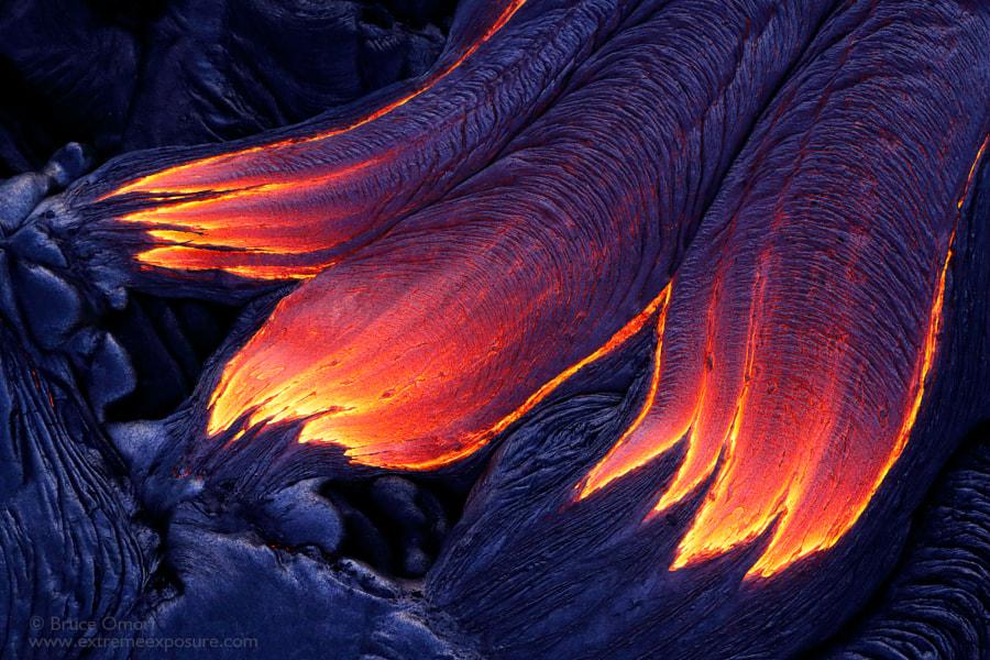 Dragon's Claw by Bruce Omori on 500px.com