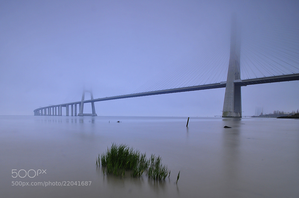 Photograph Morning fog by Jose Pombo on 500px