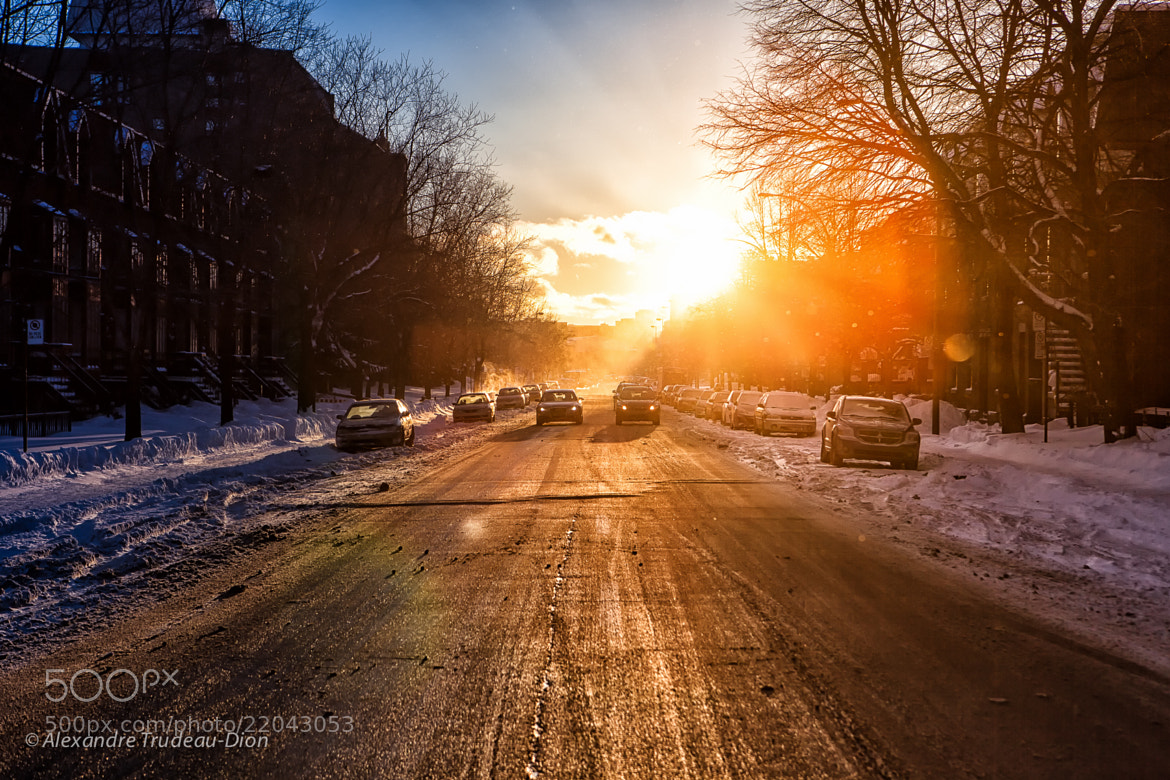 Photograph Winter sunset by Alexandre Trudeau-Dion on 500px