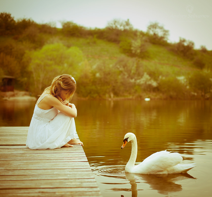 Photograph 2 swans by Andrey Selivanov on 500px