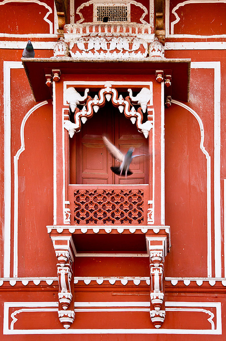 Photograph Take Off - Jaipur City Palace - Rajastan - India by Sandy Gennrich on 500px