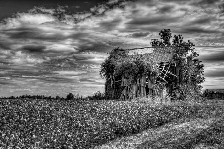 Photograph Forgotten by Jeff Burton on 500px