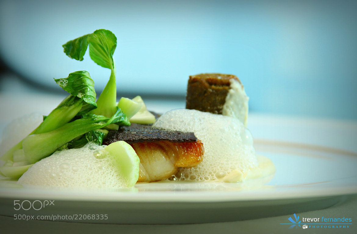 Photograph Food Photography... by Trevor Fernandes on 500px