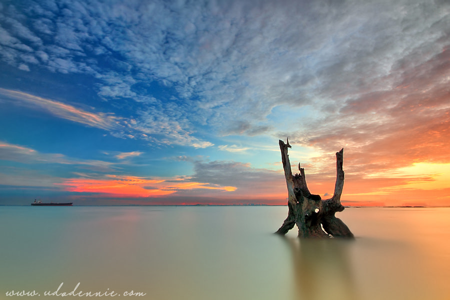 Photograph Die Alone by Uda Dennie on 500px