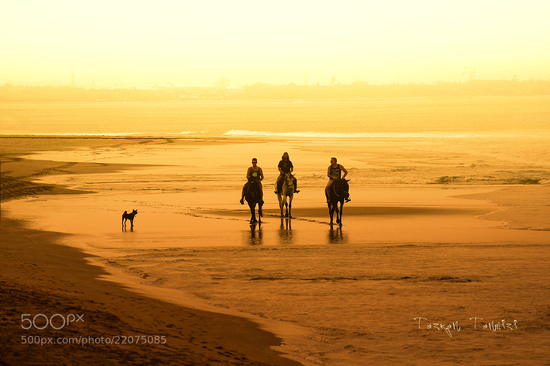 Photograph Legian Beach, Bali by Tazran Tanmizi on 500px