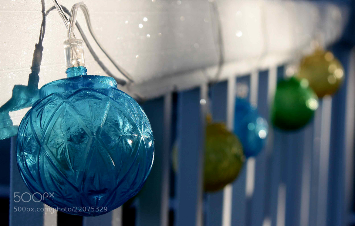 Photograph Farewell to Christmas... by Ann Matthew on 500px