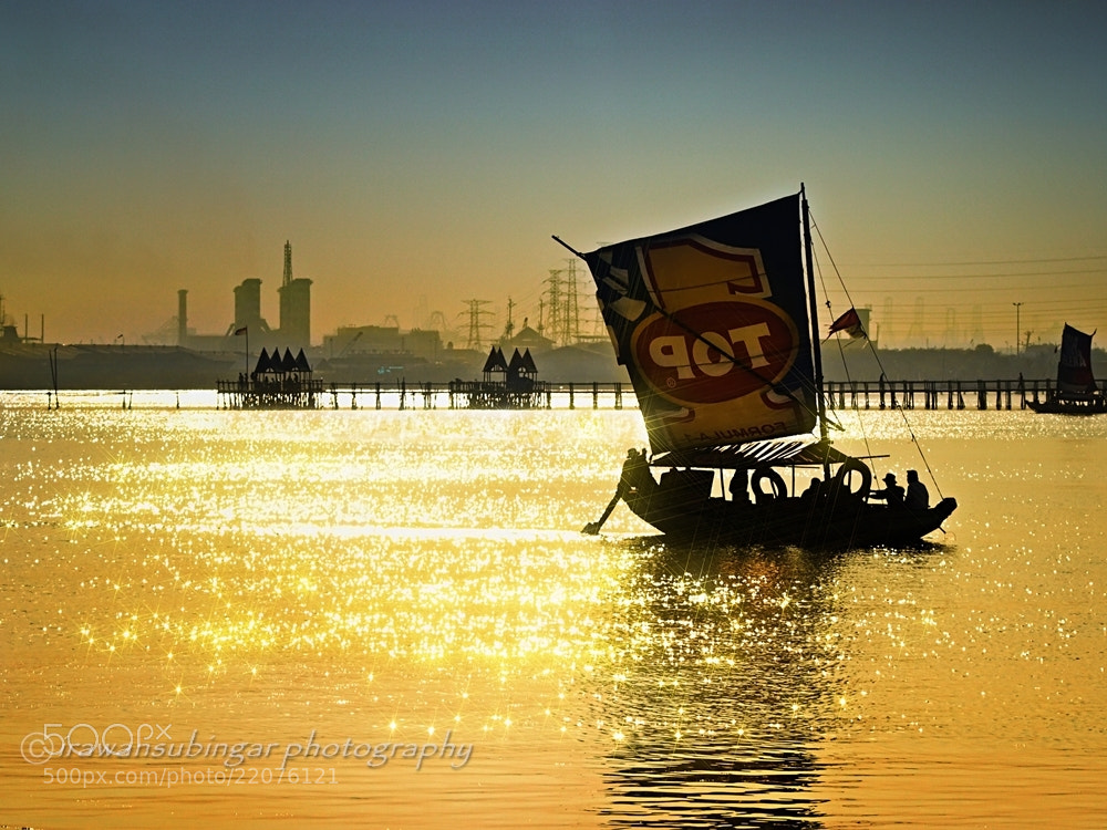 Photograph The Golden Sea by Irawan Subingar on 500px