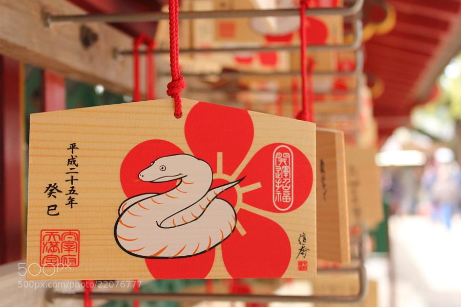 New year! by Naoko Yamamoto (NaokoYamamoto)) on 500px.com