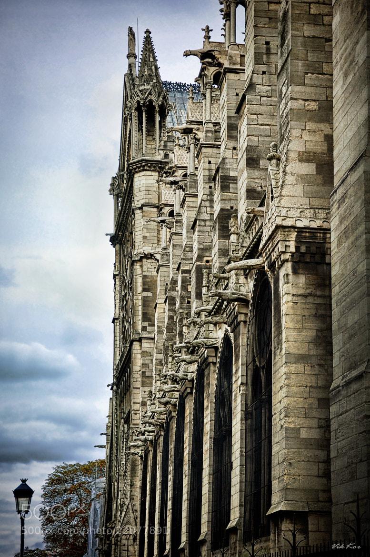 Photograph Notre Dame de Paris by Viktor Korostynski on 500px