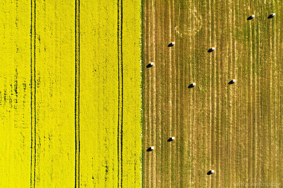 Late summer patterns in Estonia by Karl Adami on 500px.com
