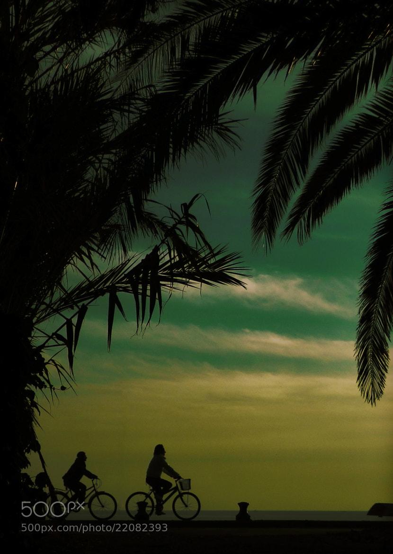 Photograph Lazing on a sunny afternoon by Kyriakos Kontozoglou on 500px