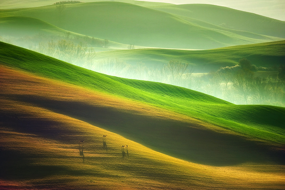 Photograph On the run by Marcin Sobas on 500px