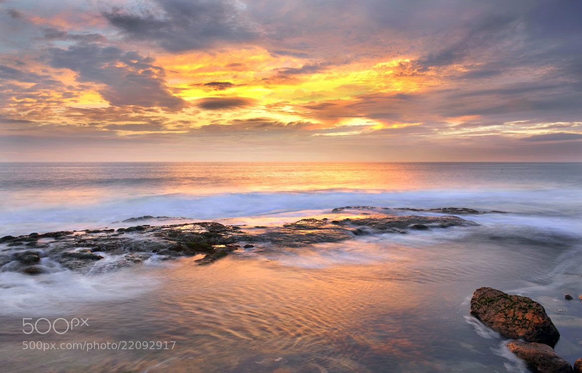 Photograph Golden sea by Gouzel  on 500px