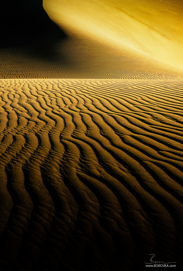 Photograph Namib by Radek Borovka on 500px