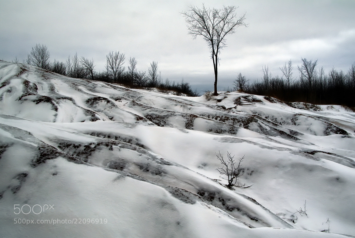 Photograph Badlands in winter by Andrzej Pradzynski on 500px