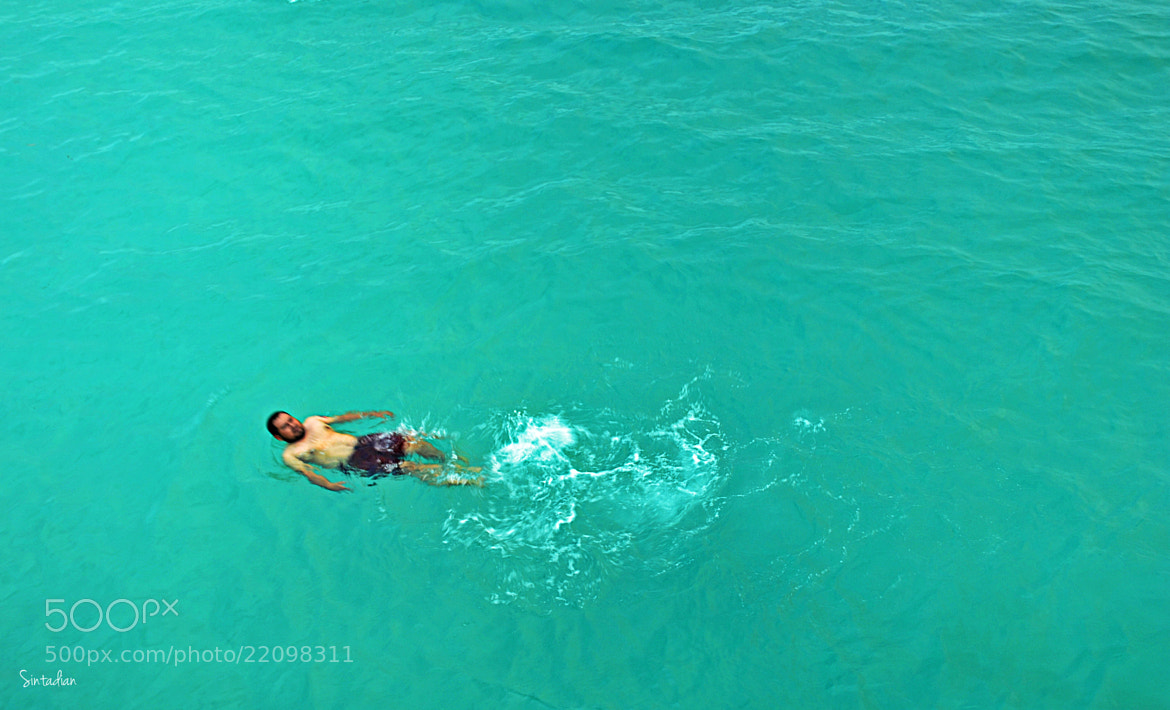 Photograph Swimming  by Sinta Dian on 500px