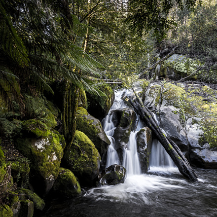 Taggerty Cascades, Marysville Vic