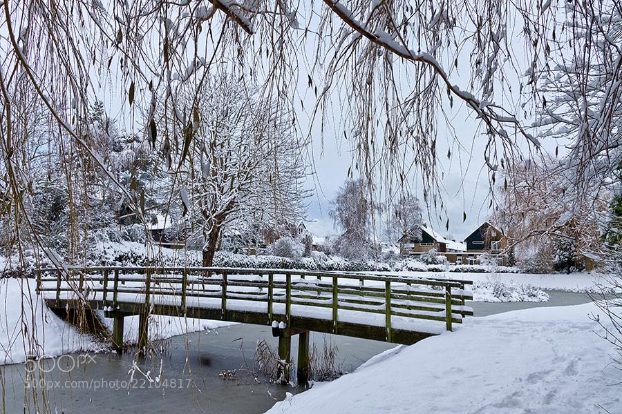 Photograph Winterbridge by Deen Guldemond on 500px