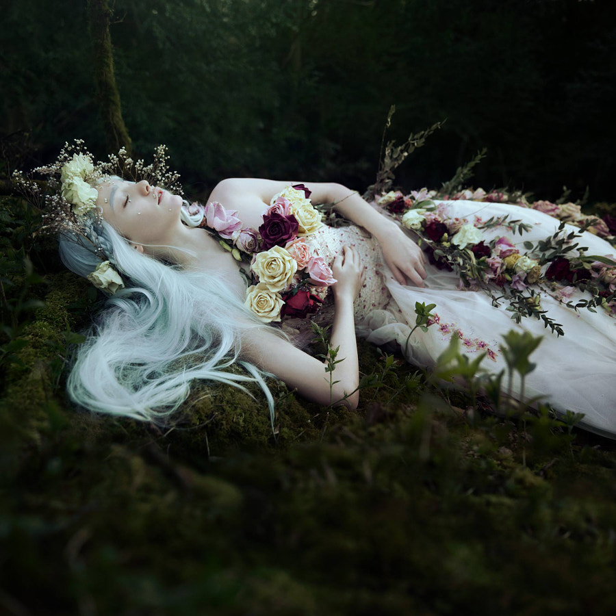 A dream in Spring... by Bella Kotak on 500px.com