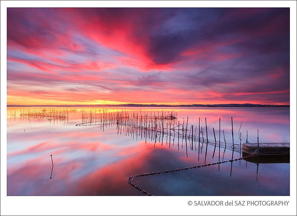 Photograph Fishing nets IV by Salvador del Saz on 500px