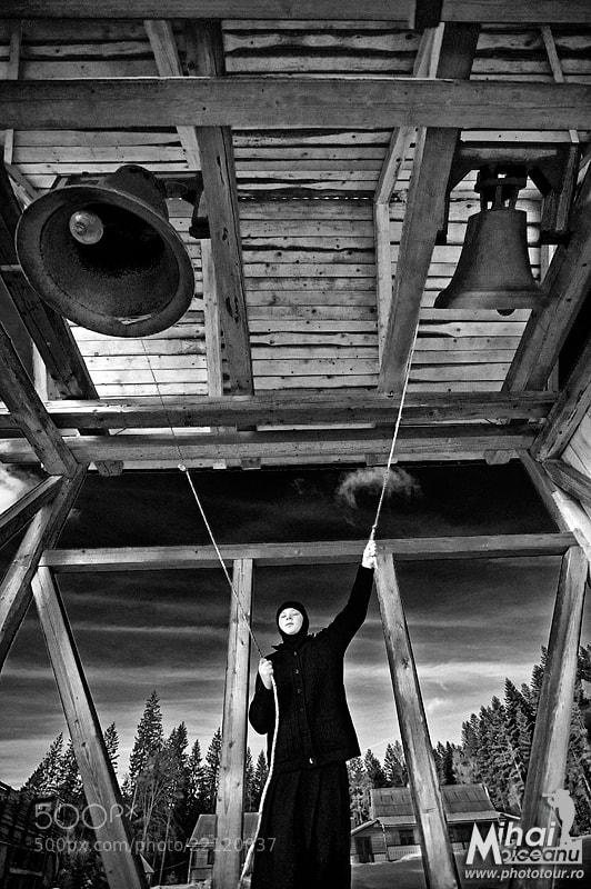 Photograph Towards the sky by Mihai Moiceanu on 500px