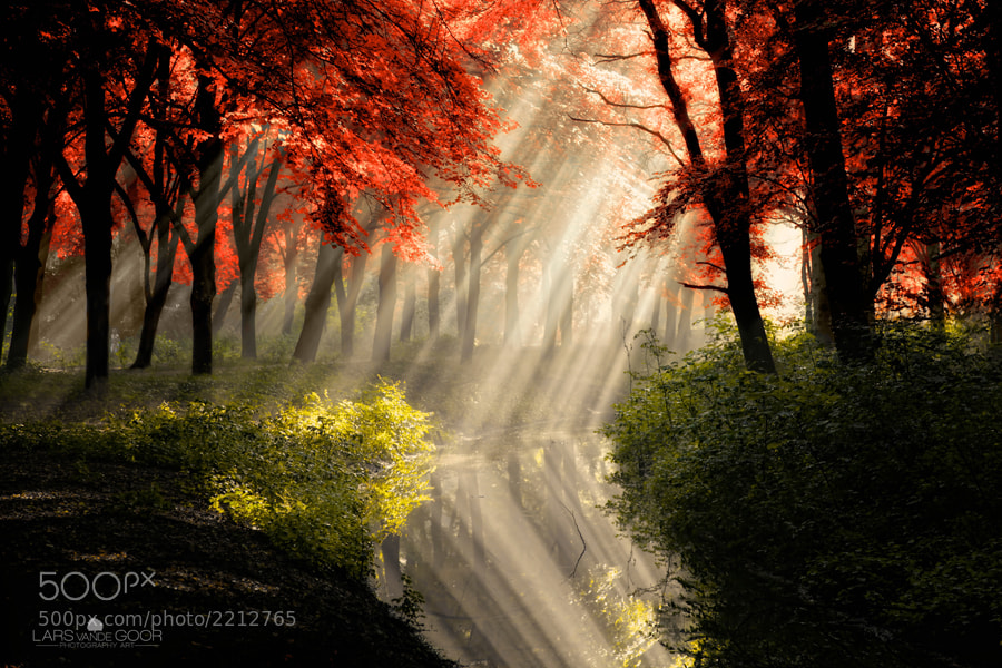 Photograph That Same Other World by Lars van de Goor on 500px