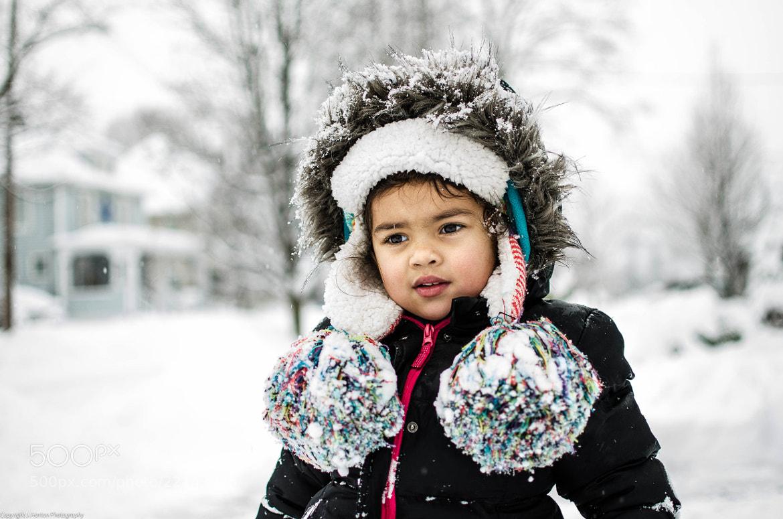 Photograph Winter Gaze by Jason Horton on 500px