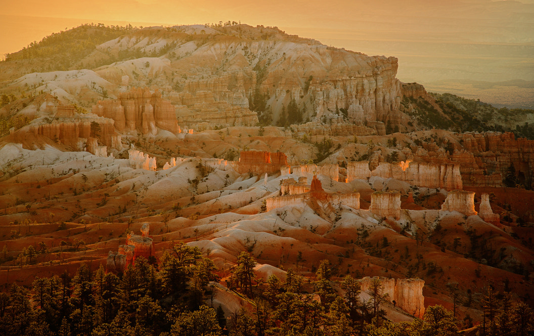 Photograph Sunrise over Bryce Canyon  by Olga  Zvereva on 500px