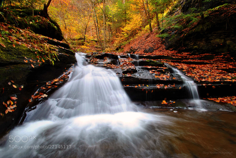 Photograph Fillmore Glen Waterfall by cheryl rendino on 500px