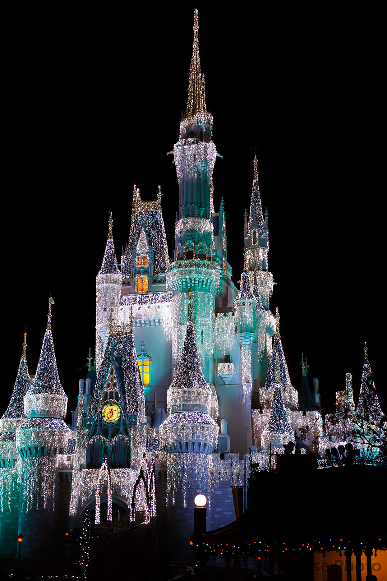 Photograph Cinderella's Castle! by Eric DuBose on 500px