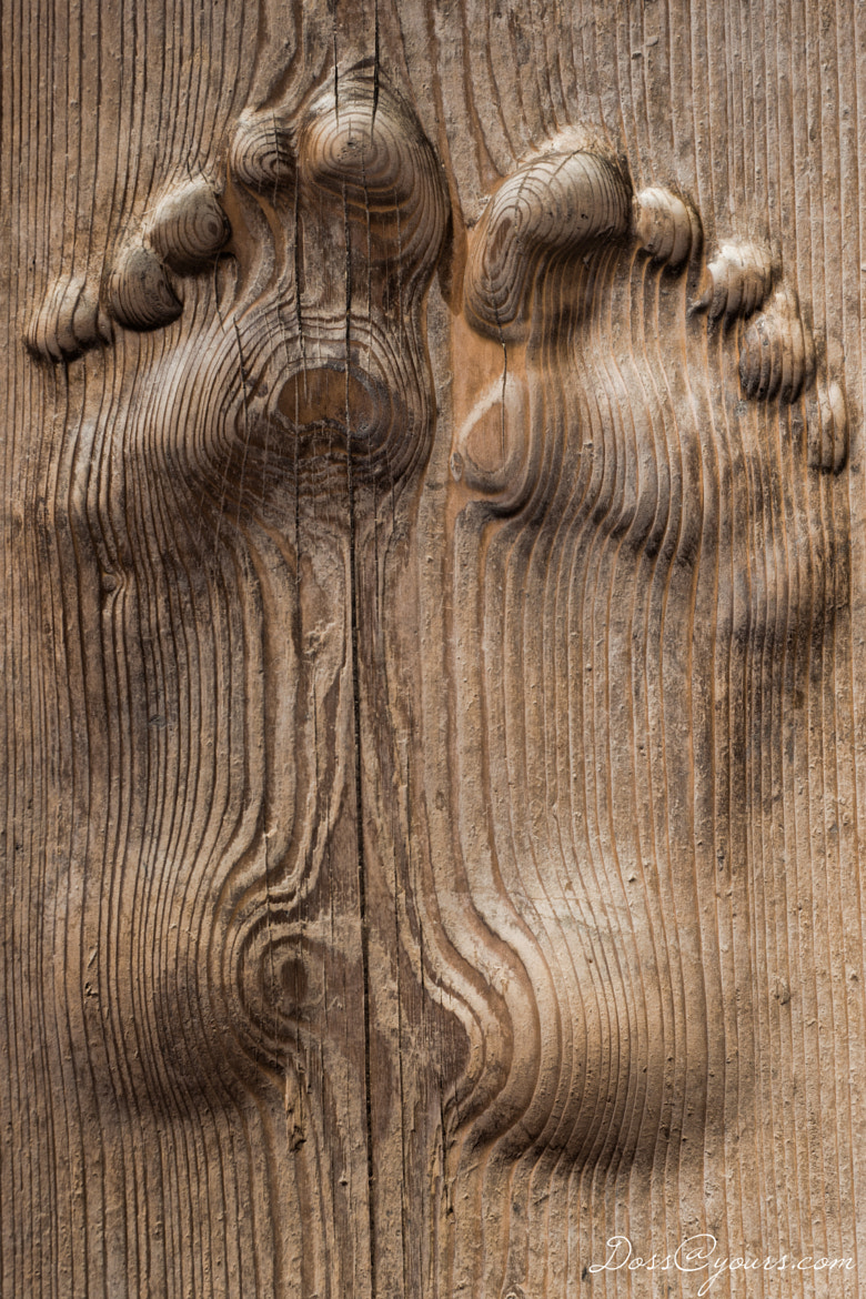 Photograph Two foot boards by Doss@yours Photography on 500px