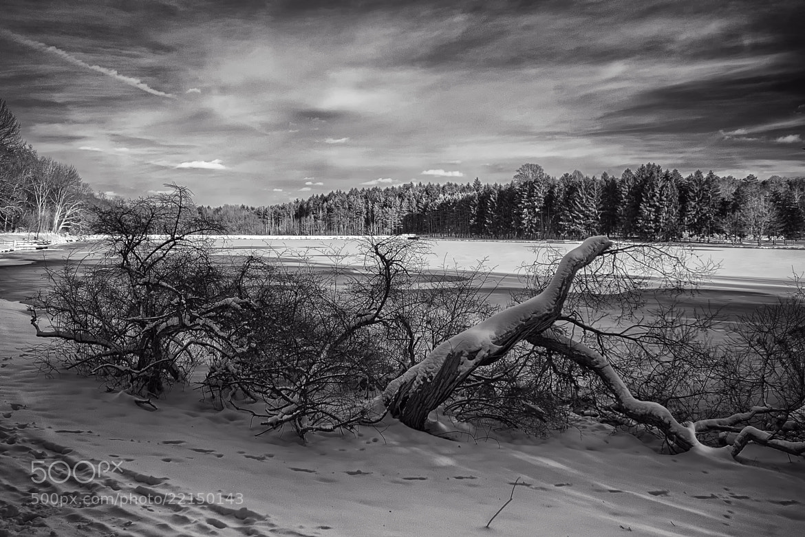 Photograph B&W Winter Lakescape by Michael Mounts on 500px