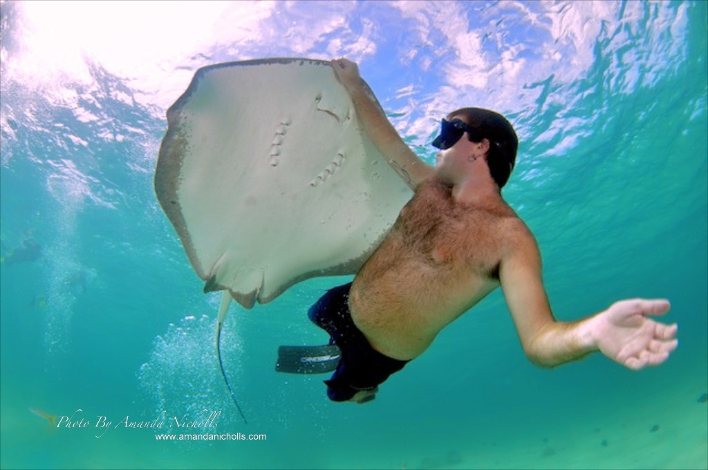 Photograph Snorkeling with Ray by Amanda Nicholls on 500px