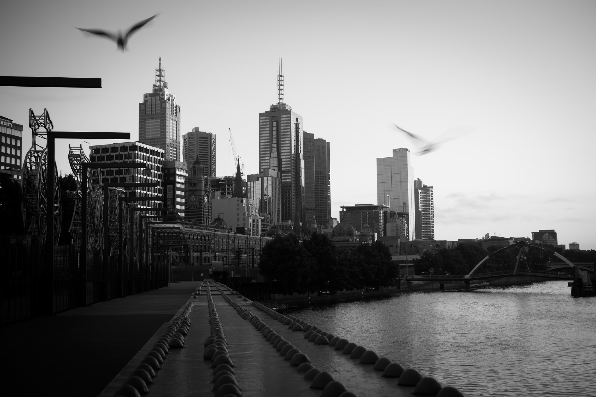 Photograph Melbourne by Timo Balk on 500px